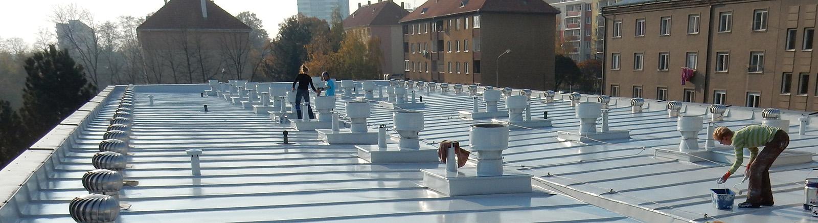 natirani plechove strechy